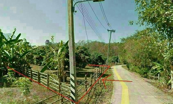 Land in ChiangDao for sale with beautiful 360 panorama view
